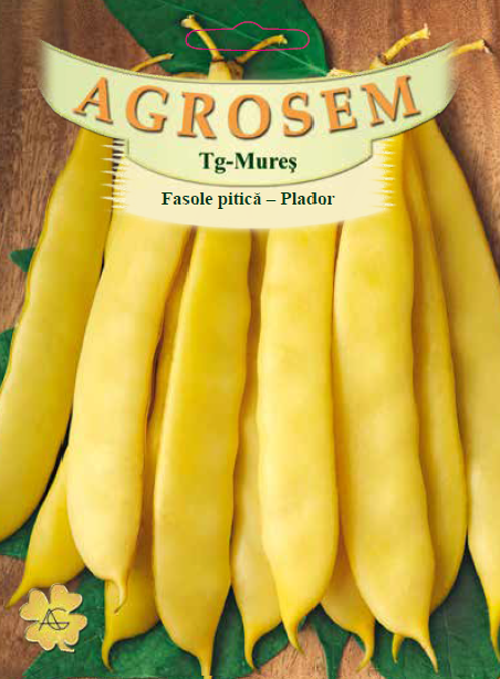 Seminte de Fasole pitica Plador - 25 kg - AS - Phaseolus vulgaris var. nanus