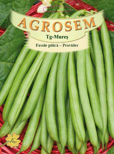 Seminte de Fasole pitica Provider - 25 kg - AS - Phaseolus vulgaris var. nanus