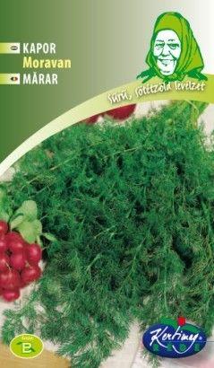 Seminte de Marar Moravan - GB - Anethum graveolens