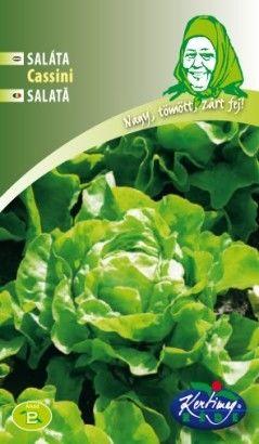 Seminte de Salata Cassini - GB - Lactuca sativa