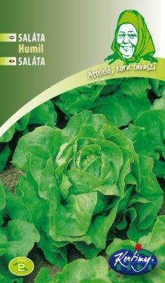 Seminte de Salata Humil - GB - Lactuca sativa