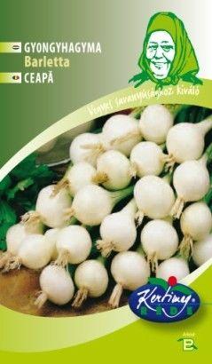 Seminte de Ceapa Barletta - GB - Allium cepa