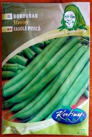Seminte de fasole pitica Stanley - 50 g - KM - Phaseolus vulgaris