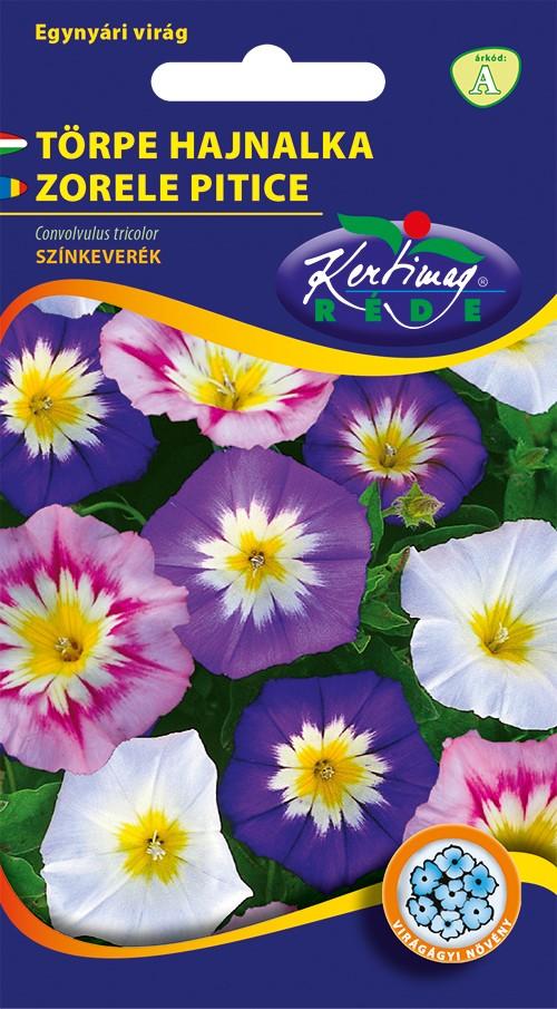 Seminte de zorele pitice - KM - Convolvulus tricolor