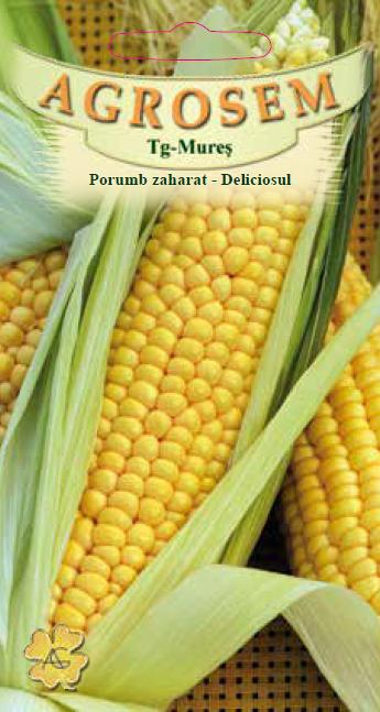 Seminte de Porumb zaharat Deliciosul - 100g - AS - Zea mays convar. sacharata